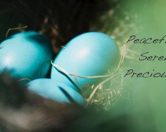 Peaceful  Serene  Precious