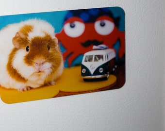 Fridge Magnet: California Dreaming Guinea Pig