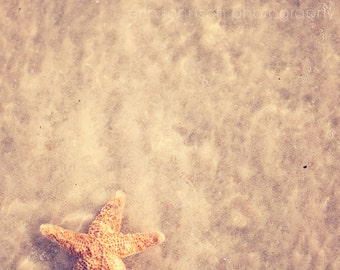 starfish photography, beach art photography, starfish art, beach cottage decor, beach home decor, neutral beach decor
