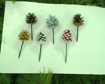 Austrian Pine Cone with picks