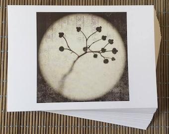 Set of 5 postcards, postcards 'Lanterna Magica'