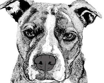 "Pet Portrait, Custom Pet Portrait, Illustration, drawing, gift, art, your pet 8""x10"" print and JPG & PDF file-Example here"
