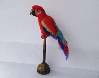 OOAK Realistic  Macaw Miniature Dollhouse . TO ORDER!!!!!!!!!!!!