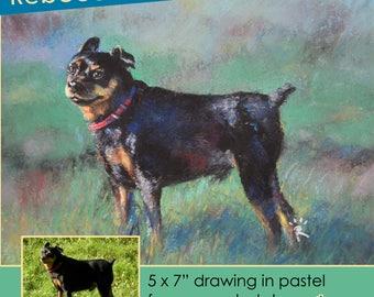 "5x7"" Custom Pet Portrait"