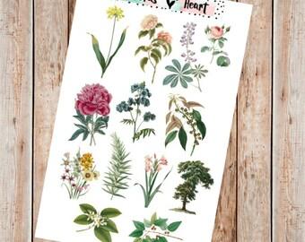 Vintage floral illustration planner stickers