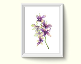 Orchid Flower Watercolor Painting Poster Art Print P453