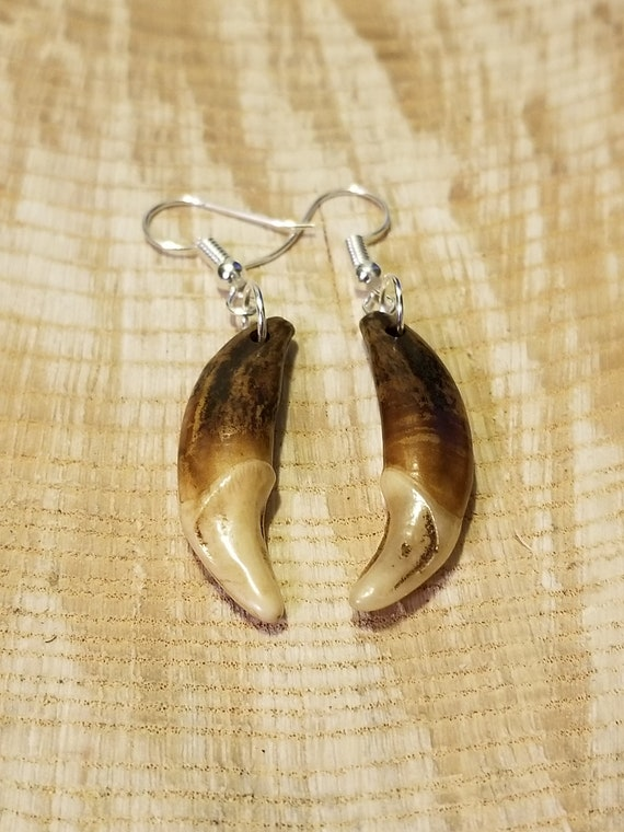 Handmade Real Tibetan Wolf Tooth Silver Earrings Native American Tribal Outdoors Primal Fang Fashion Art Collection (E205)