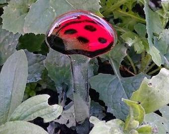 Fused Glass Ladybird Garden Stake, Garden Decorations