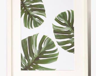 Tropical Leaf A4 print