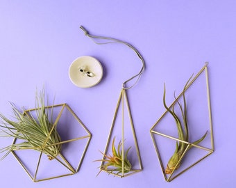 Himmeli air plant holder | geometric decor in copper or brass [with or without tillandsia] wire planter