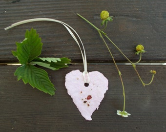 Plantable paper hearts, alpine strawberry seeds, seed paper, recycled paper seed paper flowers diy planting kit herb seed bomb seed favors