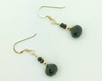 Black Onyx 14K Gold Fill Earrings #AVEN137