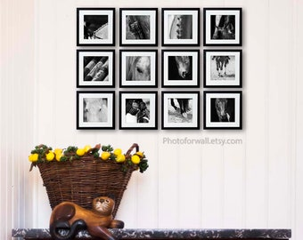 Horse art set of 12 prints/Gallery wall Black and white photography/horse prints/large wall art/office decor/girl room decor/nursery art