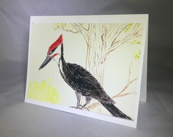 Woodpecker Greating Cards (6 cards per pack)