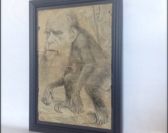 Aged Reproduction Victorian Print of Charles Darwin depicted as a monkey!