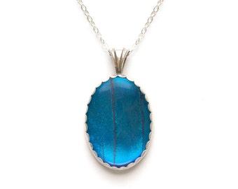 Blue Morpho Butterfly Jewelry Sterling Silver