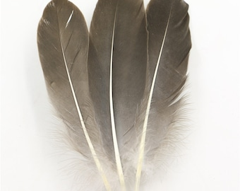 50-1000 units / lot DIY Clothing accessories goose feathers 10-15 cm / 4-6 inches gray Goose feather