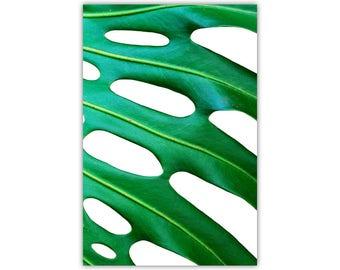 Monstera Art, Leaf Print, Nature Canvas, Green Wall Decor, Tropical, Minimalist, Photographic, Summer