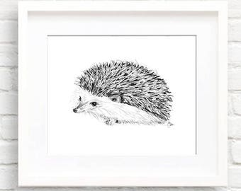 Porcupine • Animal Illustration | Glicée Art Print | Wall Art | Animal Art
