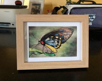 Fly away a framed print of original artwork