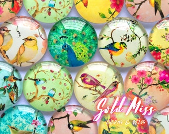 Bird Mixed Pattern Resin Cabochon 50pcs, Boho Jewelry Cabochon Settings Soft Grunge Antique Vintage Kawaii Charms Kawaii Cabochon