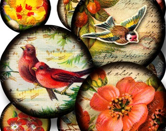 Vintage Flora and Fauna Digital Collage Sheet Bottle Cap Images 1 inch Round Birds Flowers Instant Download in 1 Inch Circles piddix 760