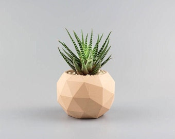 Geometric Concrete planter, minimalistic planter, round Geometric planter, cement planter