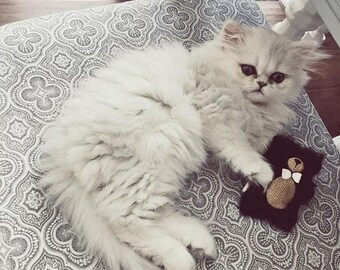 Plush Cat Toy | Luxury Cat Gift | Embroidered Bear | Cat Gift | Unique Cat Toy | Cat | Compressed Catnip | Catnip Bear | Catnip