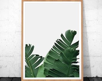 Banana Leaf Print, Leaf Print, Palm Leaf, Tropical Poster, Digital Download, Palm Leaf Wall Decor, Tropical Art Print, Palm Tree Print Art