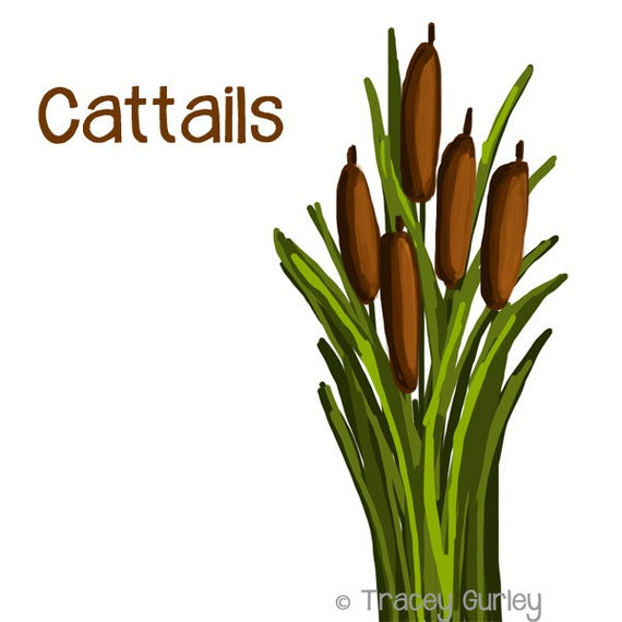cattails graphic original art cattails clip art cattails rh etsy com Cattails in Pond cattails clipart black and white