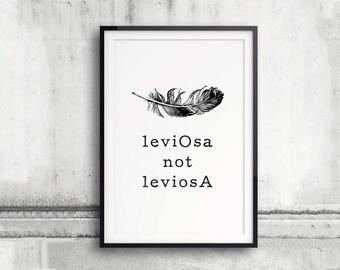 It's LeviOsa not LeviosA, Wingardium Leviosa Poster, Harry Potter Poster, The Prisoner of Azkaban, Harry Potter Spell