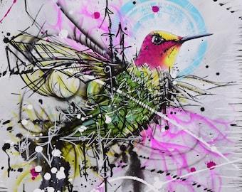 Ana's Hummingbird-Abstract