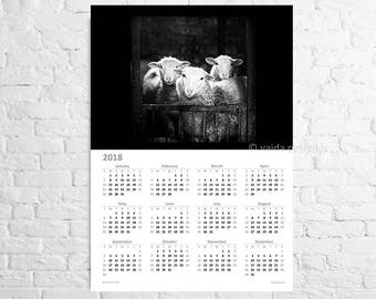2018 wall calendar - A3 poster - Large calendar with sheep photo in black and white for animal lover - Year at a glance
