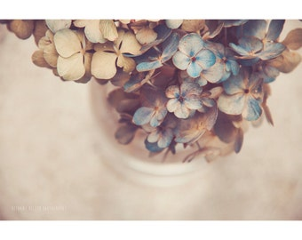 Hydrangea Photography Nature Flowers Floral Still Life Vintage Rustic Home Decor Shabby Chic Blue Vase Bouquet Nursery Fine Art Print