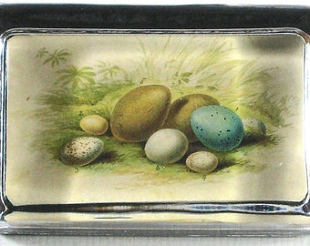 Eggs in Nest Large Rectangle Glass Decoupage Paperweight - Victoria Fischetti Designs - Signed on the back