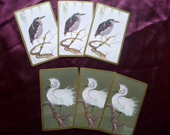 Vintage Birds Playing Cards