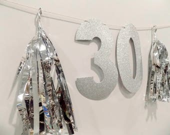30th Birthday Glitter Numbers & Tassel Banner for 30th Birthday Party, Photobooth Banner 16th 18th 21st 40th 50th 60th Gold Silver