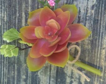Pink Succulent Boutonierre