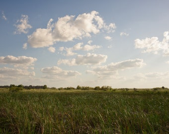 Cloud Factory - A Sunny Summer Afternoon in the South Florida Everglades - Florida Landscape Photograph