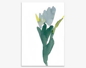 Plant Study IV, print on fine art paper