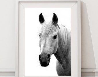 White Horse, Horses Printable Art, Large Art Print, Modern Minimalist Scandinavian Animals Wall Art, Large Wall Art, Black and White Horse