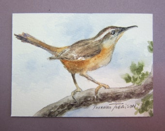 Carolina Wren ACEO Watercolor Print 697 songbird watercolorsNmore