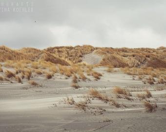 DUNES II photography print, Netherlands coast art, 8x12