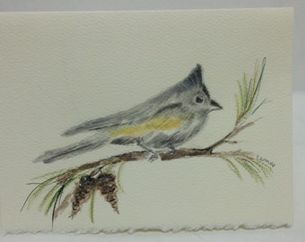 Tufted Titmouse Bird Note Card