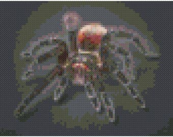 Cross stitch tarantula pdf pattern