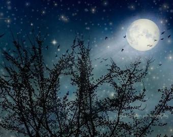 Moon & Stars Photography - blackbirds, magical, dreamy, midnight blue baby nursery print