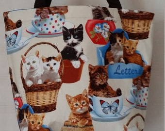Cats in containers Lunchbag
