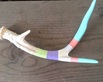 Hand painted naturally shed deer antler, pastel colors