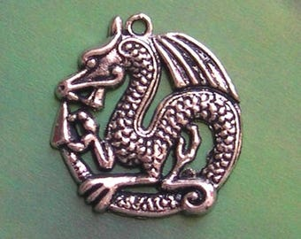 Decorated with silver DRAGON PENDANT charm
