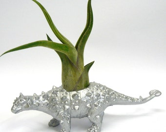 Silver Ankylosaurus Dinosaur Planter with Air Plant  // Coworker Gift // For Her // For Him